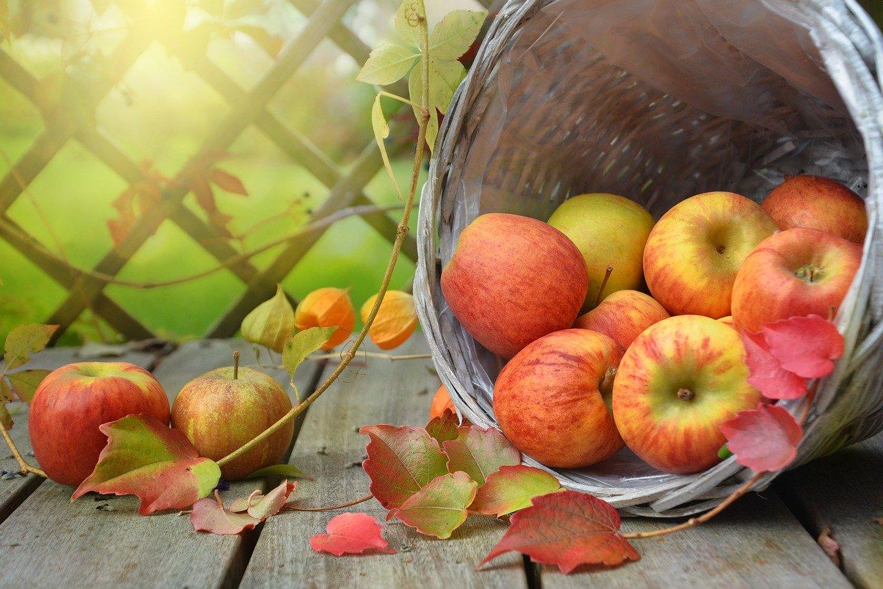 Φθινοπωρινές τροφές που πρέπει να εντάξετε στη διατροφή σας